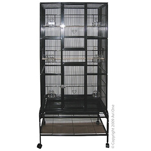 Bird Toy 3Pc Olympic Rings With Bell Chain Of Lattice Balls And Lanten Wit